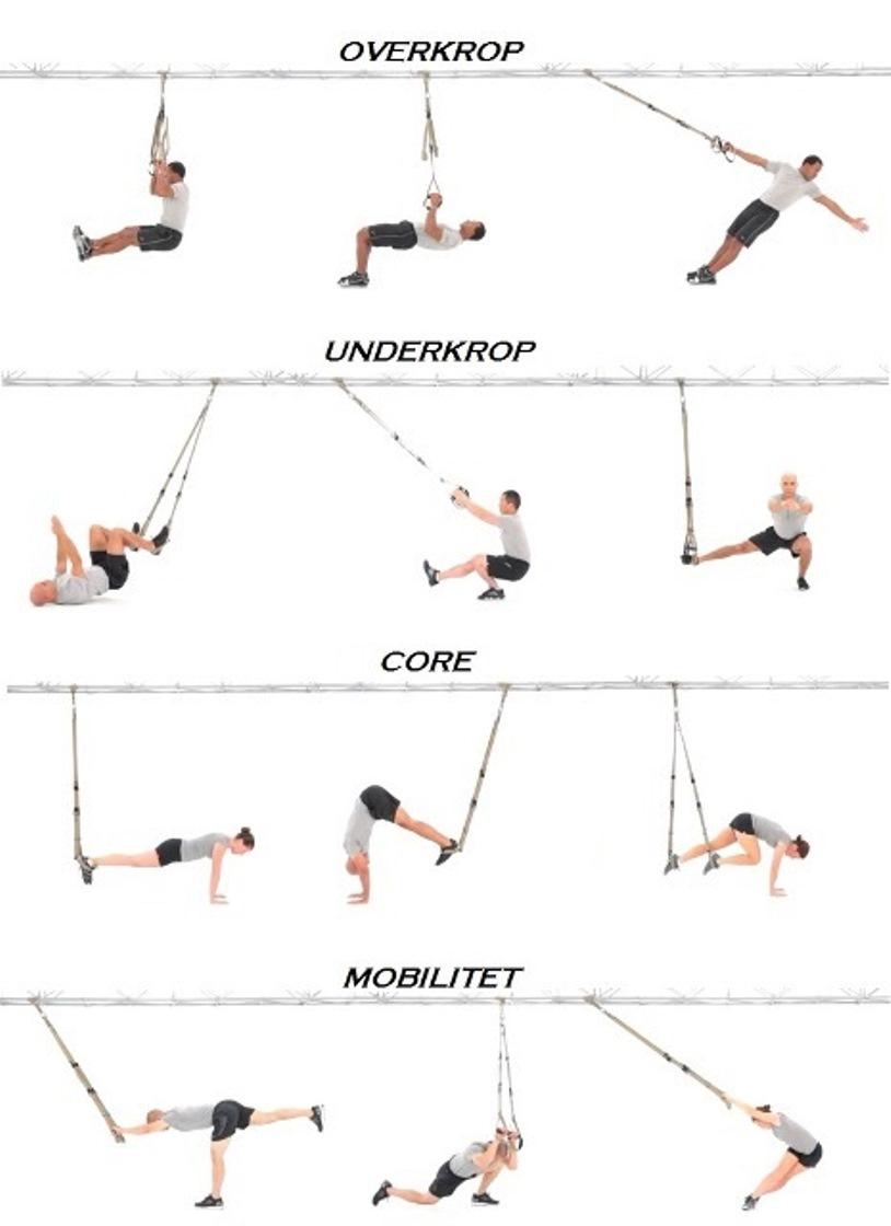 trx træning øvelser